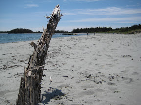 Taylor Head Provincial Park, Spry Bay, Nova Scotia