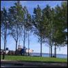 dewolf-park-playground-summer