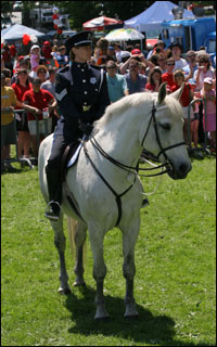 Justice the Police Horse was 23 years old when he passed away last month due to health complications.