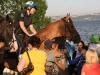 Police horsing around.