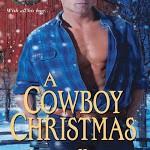 Christmas e-Books Novels