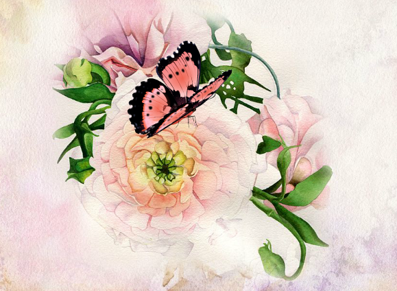 turning hand-painted watercolors into animated e-cards