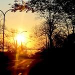early morning sunshine