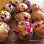 Shortcut Recipes: Low Fat Cranberry Orange Muffins