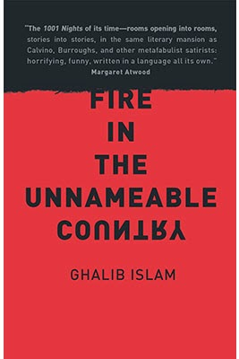 http://discover.halifaxpubliclibraries.ca/?q=title:%22fire%20in%20the%20unnameable%20country%22%22