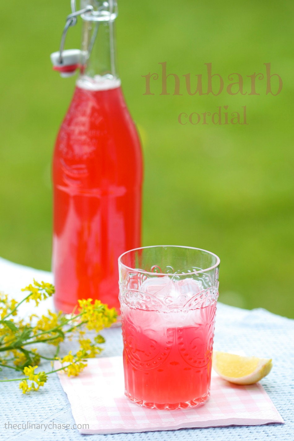 rhubarb cordial by The Culinary Chase