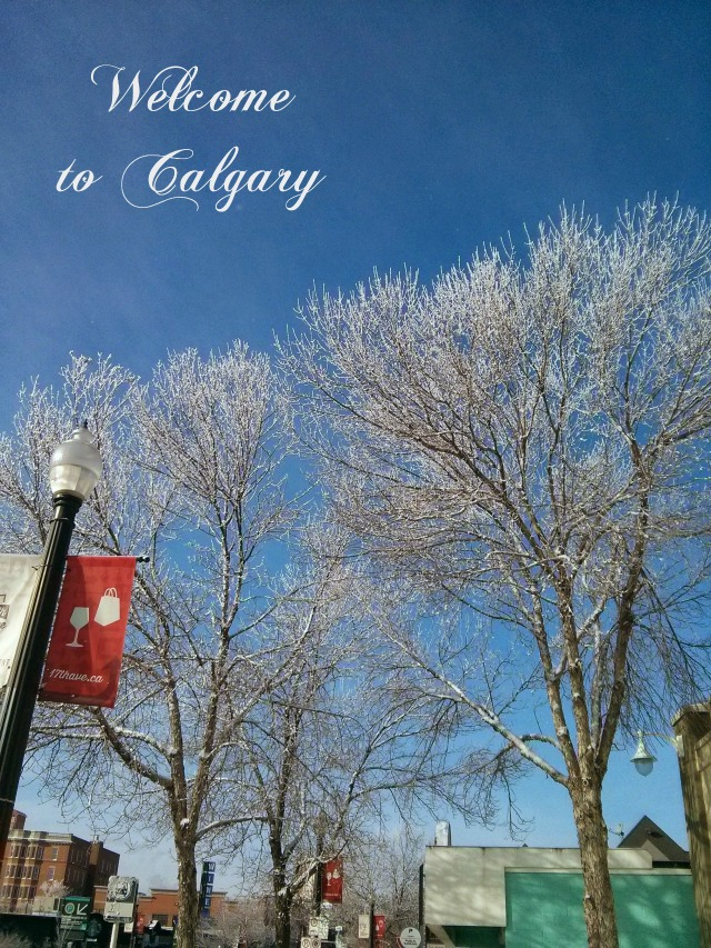17th Avenue Calgary
