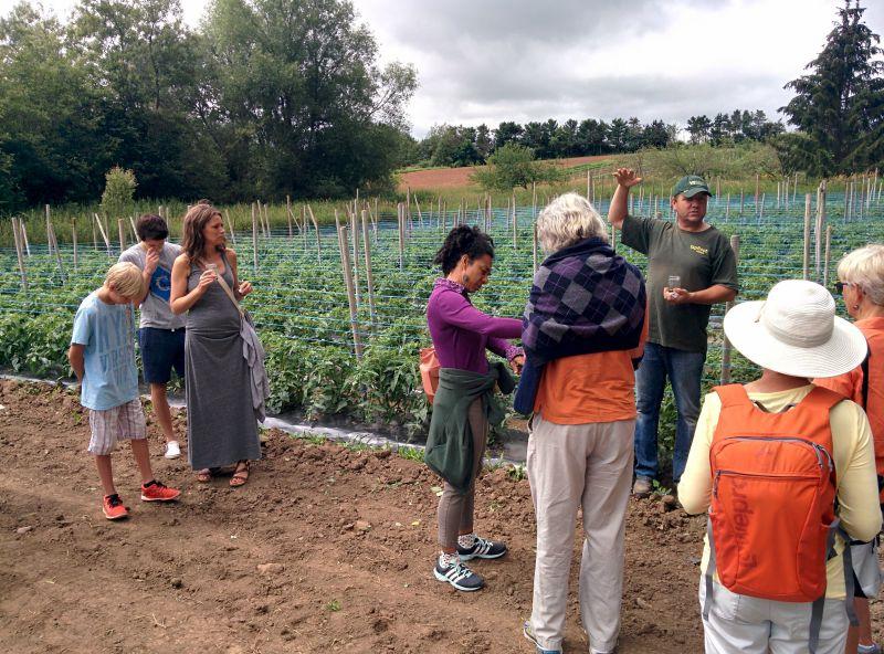 Josh explaining the different tomato fields