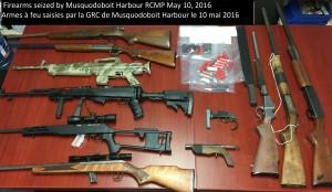 firearms MH