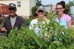 Fred, Kimmy, and Megan inspecting the tomatoes