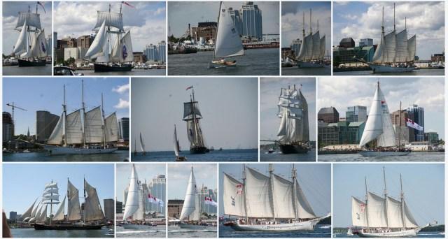 Parade of Sail Photos