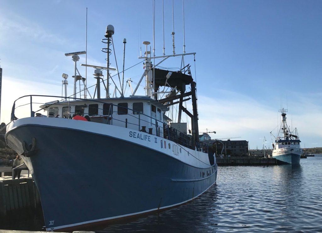 Fishing Fleet is Back
