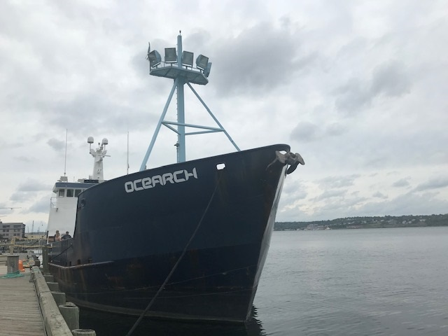 Tag your.. a shark?! @ocearch #NovaScotiaExpedition