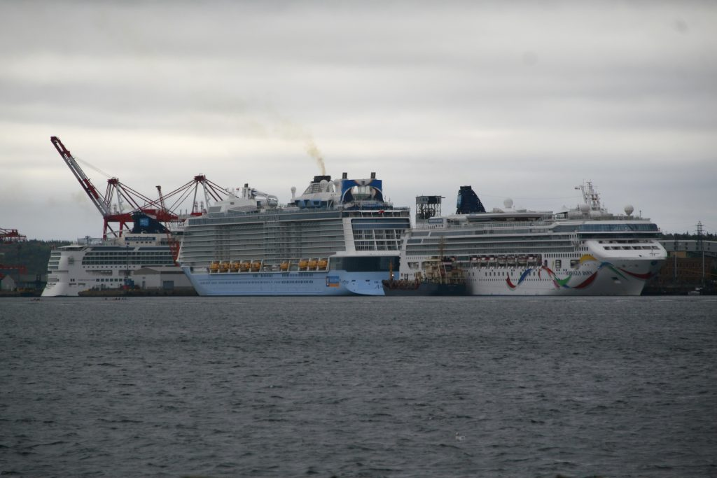 Busiest Cruise Ship Day of the Year.