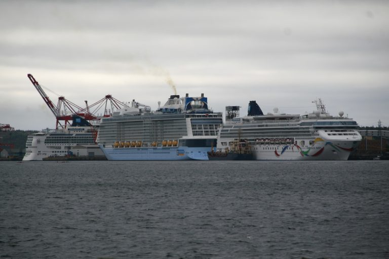Port Releases its 2019 Cruise Schedule.