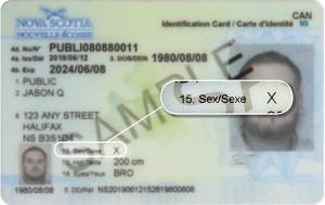 card-samples-2